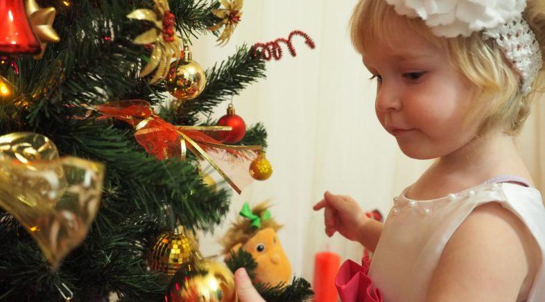 Inspirações para ceia natalina da família